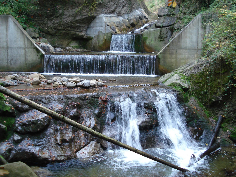 Wasserfaelle Fischenbach